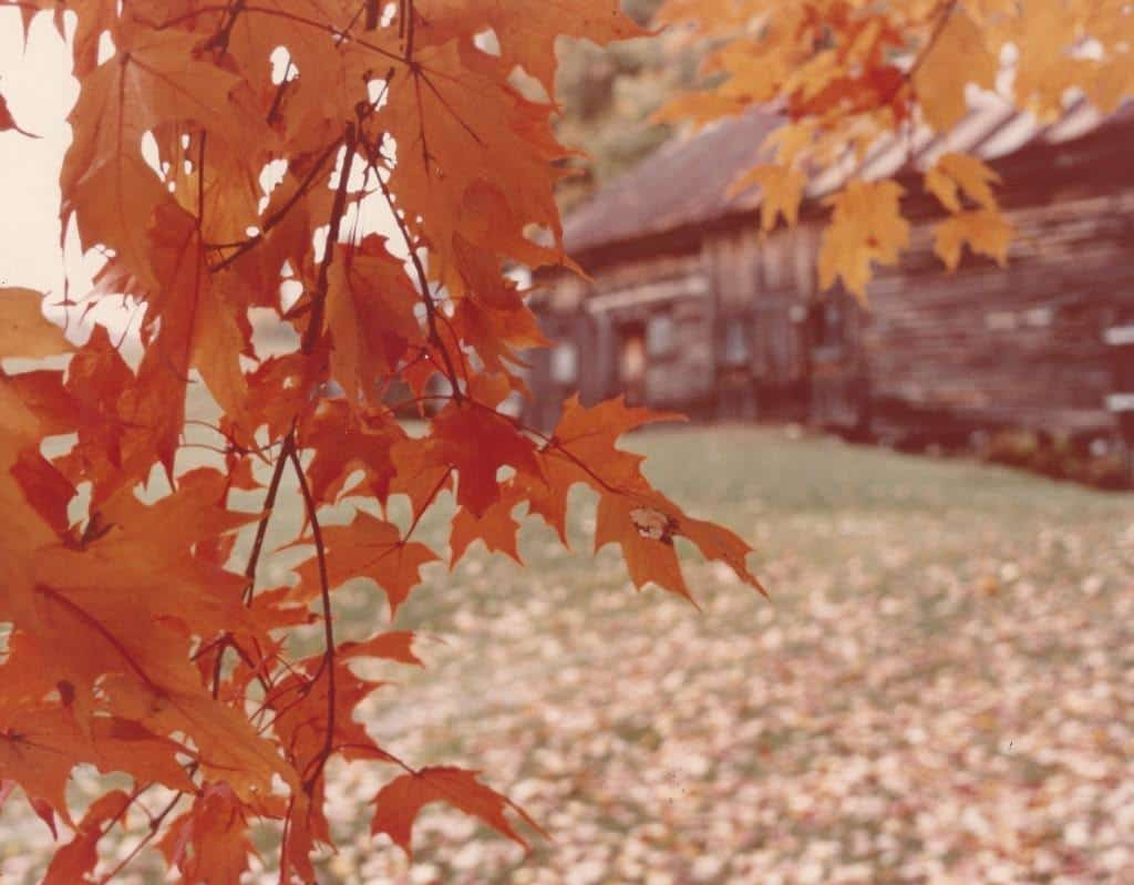 Autumn at the farm in Massachusetts