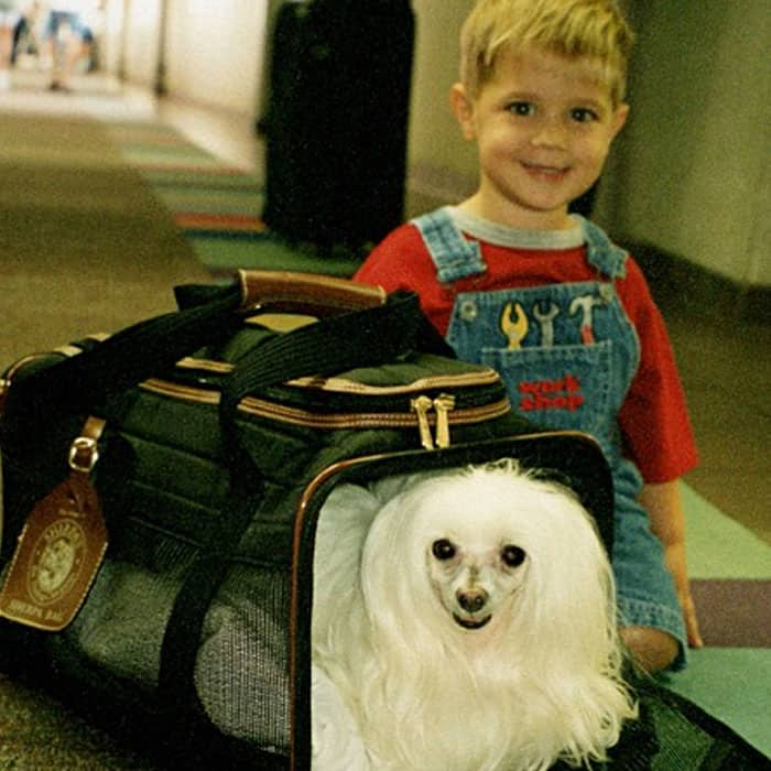 Cutie the dog in a SHERPA bag